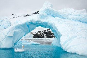 Gray Malin_Antarctica_02
