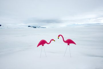 Gray Malin_Antarctica_04