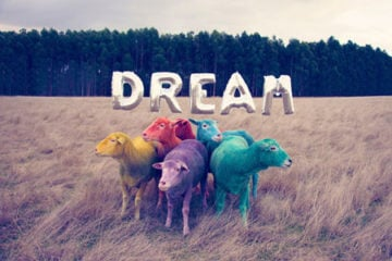 gray-malin-dream-series-rainbow-sheep-pre