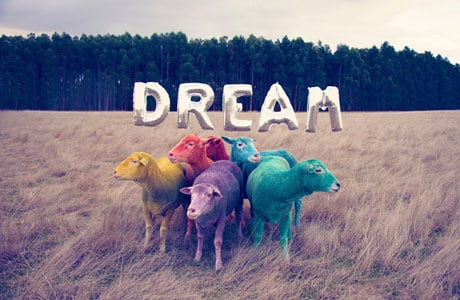 Dream by Gray Malin