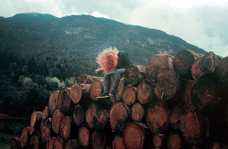 Get lost in the wild with Francis Flower