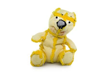 Rogowski-Bears-pre2