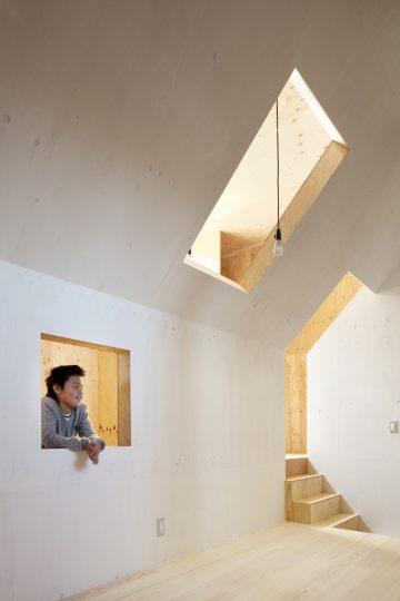 Ant_House_07
