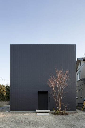 Ant_House_13