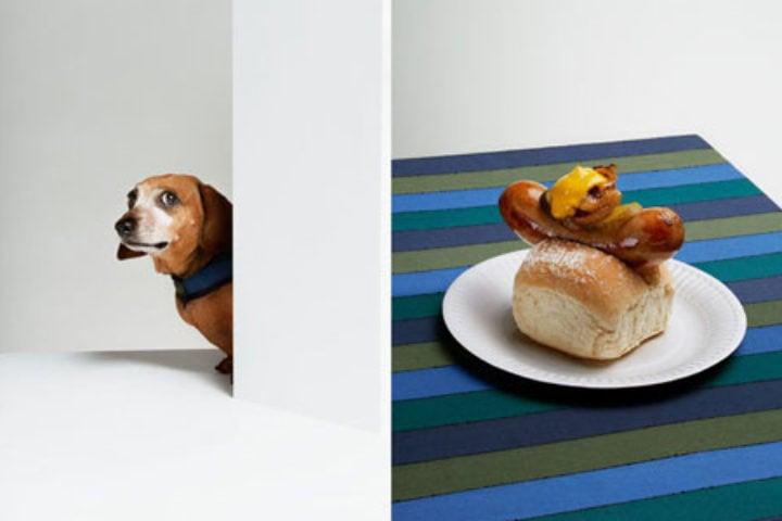 hot_dog_Jess_pre