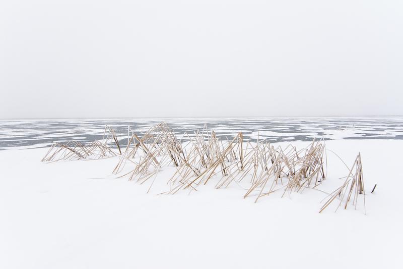 Paul_Johnson_Winter_Return_07
