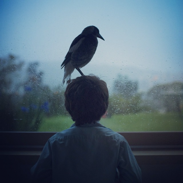 penguinthemagpie_Instagram_05