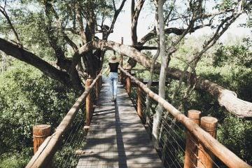 Southafrica_Anke_01