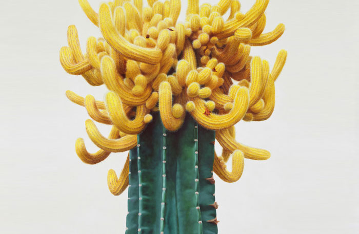 Kwang-Ho Lee's Hyperrealist Paintings of Quirky Cacti