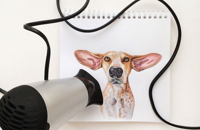 Interactive Dog Illustrations By Valerie Susik