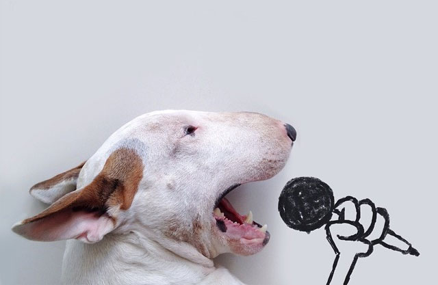 Creative Dog Owner Puts His Pet In Funny, Hand-Drawn Scenes