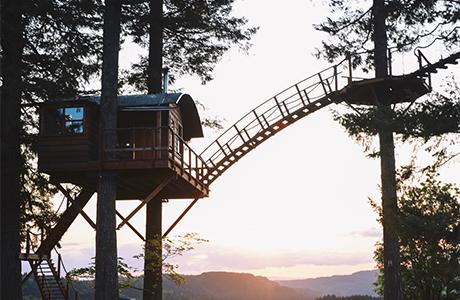 A Self-built Treehouse, A Childhood Dream Come True