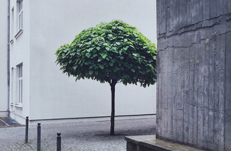 #ignt_concretejungle Winner Konrad Langer
