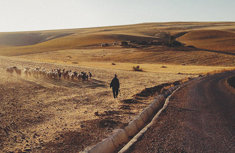 A Road Trip To The Ancient City Of Fès In Morocco