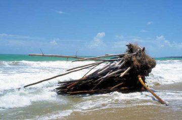 FilippoIoco_art-bamboodrift-PuertoRico