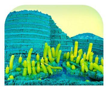 BlueDye#1 Cliffs