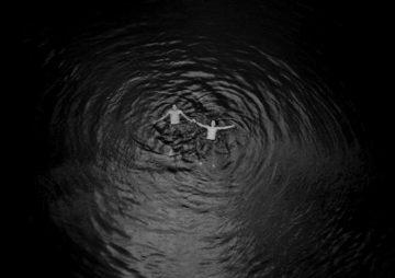 Daniel Gebhart de Koekkoek_Photography_1