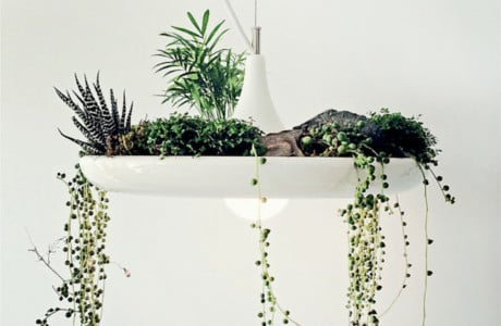 Minimal Plantable Lamp By Object Interface