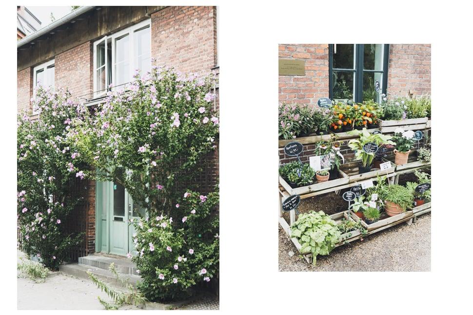botanical_garden_05