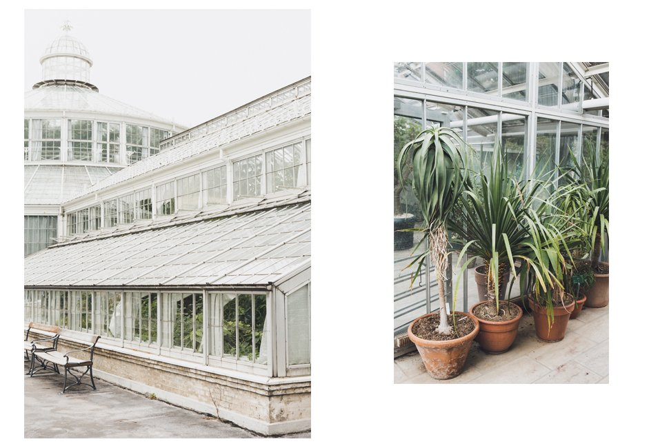 botanical_garden_07