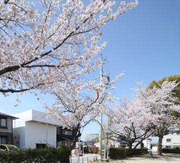katsutoshi_architecture-11