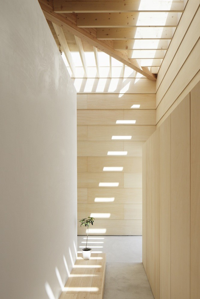 lightwallshouse_architecture-04