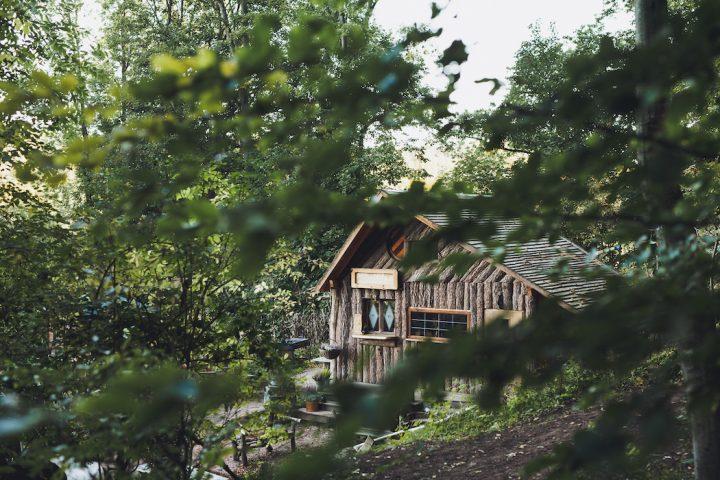 treehouse hotels robin 39 s nest hesse germany. Black Bedroom Furniture Sets. Home Design Ideas