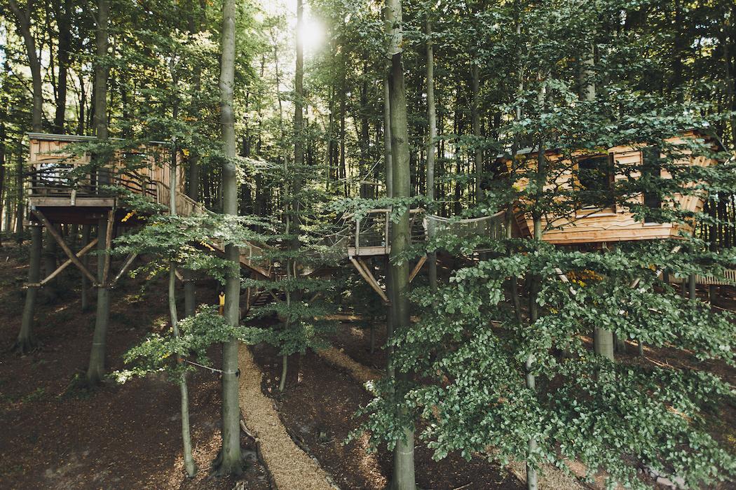 treehouse hotels robin 39 s nest. Black Bedroom Furniture Sets. Home Design Ideas