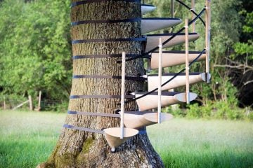canopy_tree_stairs-thor_ter_kulve_robert_mcintyre_design_02