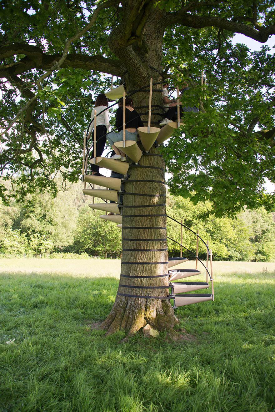 canopy_tree_stairs-thor_ter_kulve_robert_mcintyre_design_09