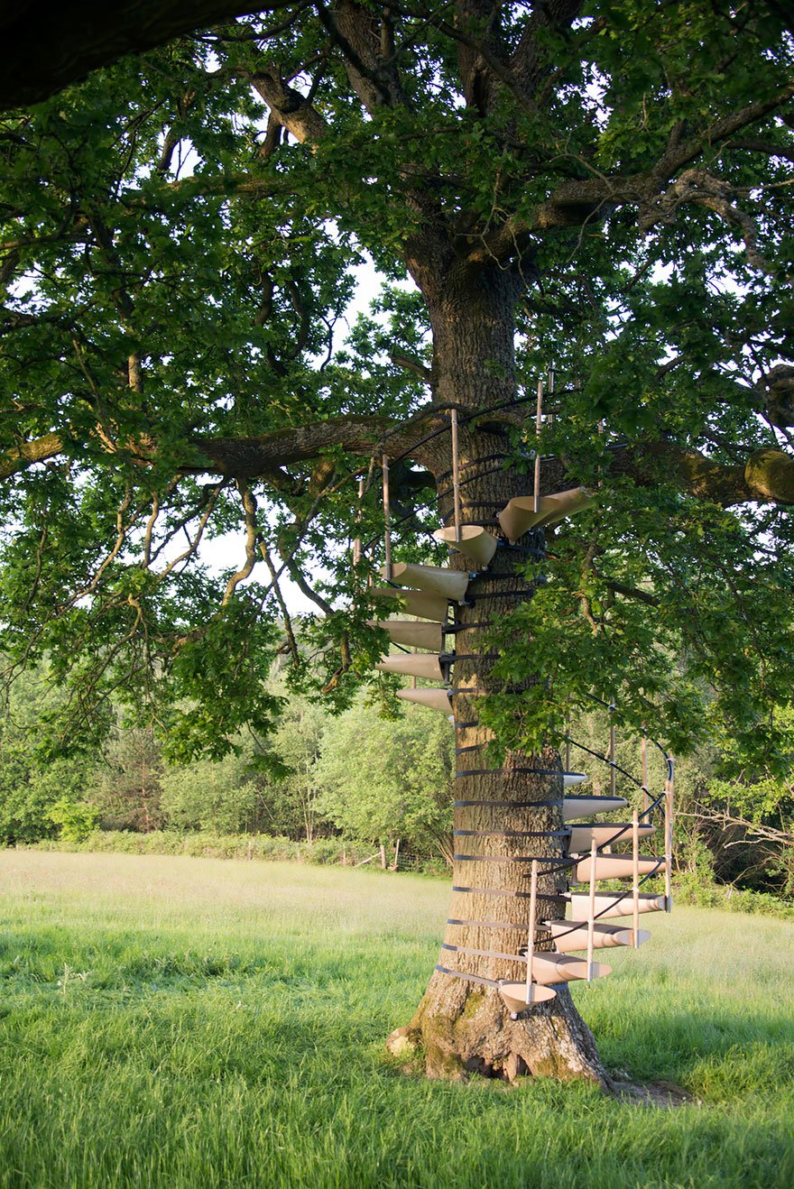 canopy_tree_stairs-thor_ter_kulve_robert_mcintyre_design_10