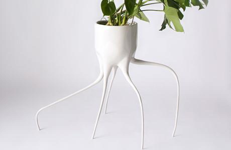 Monstera Plant Pots By Tim Van De Weerd
