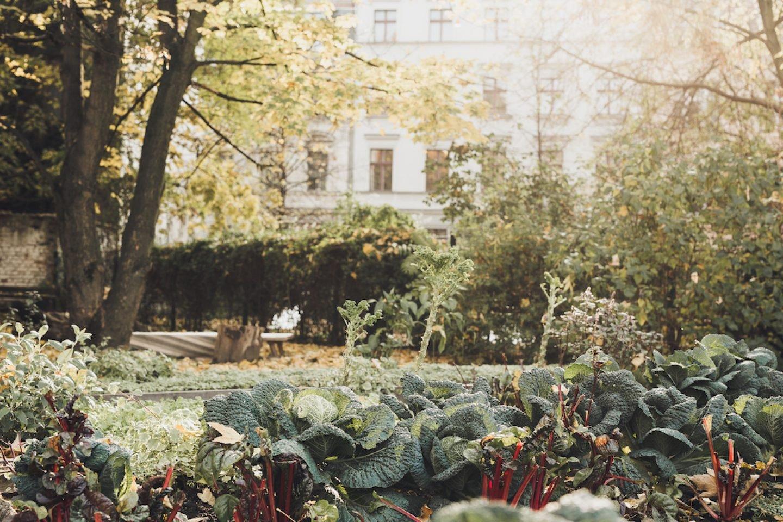 buchholzberlin_389