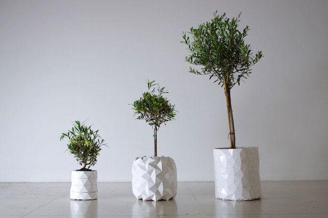 growth_design-01