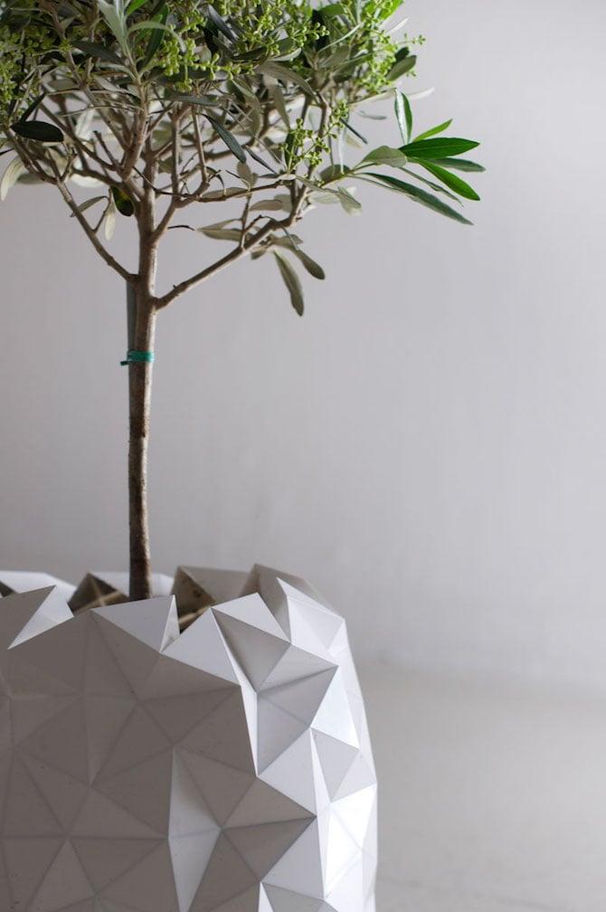 growth_design-04