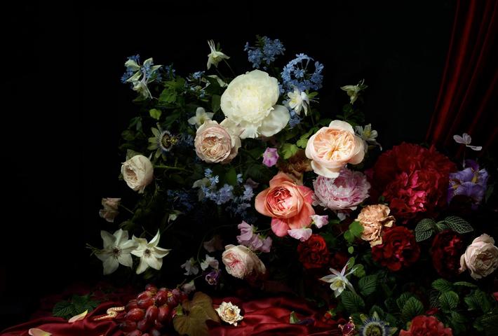 Pressed Flower Art - POSTPONED - Asheville Art Museum