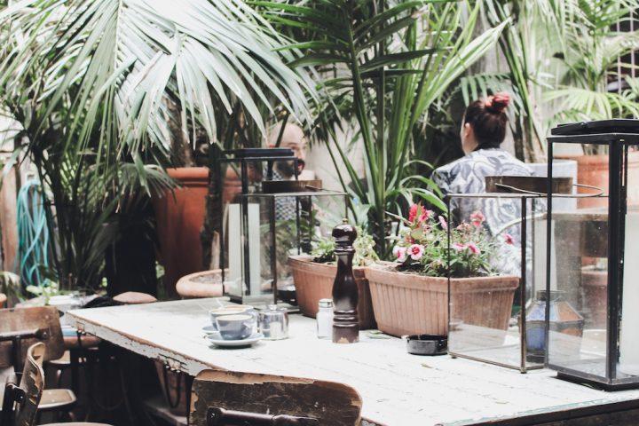 Olive Cafe Restaurant Wellington