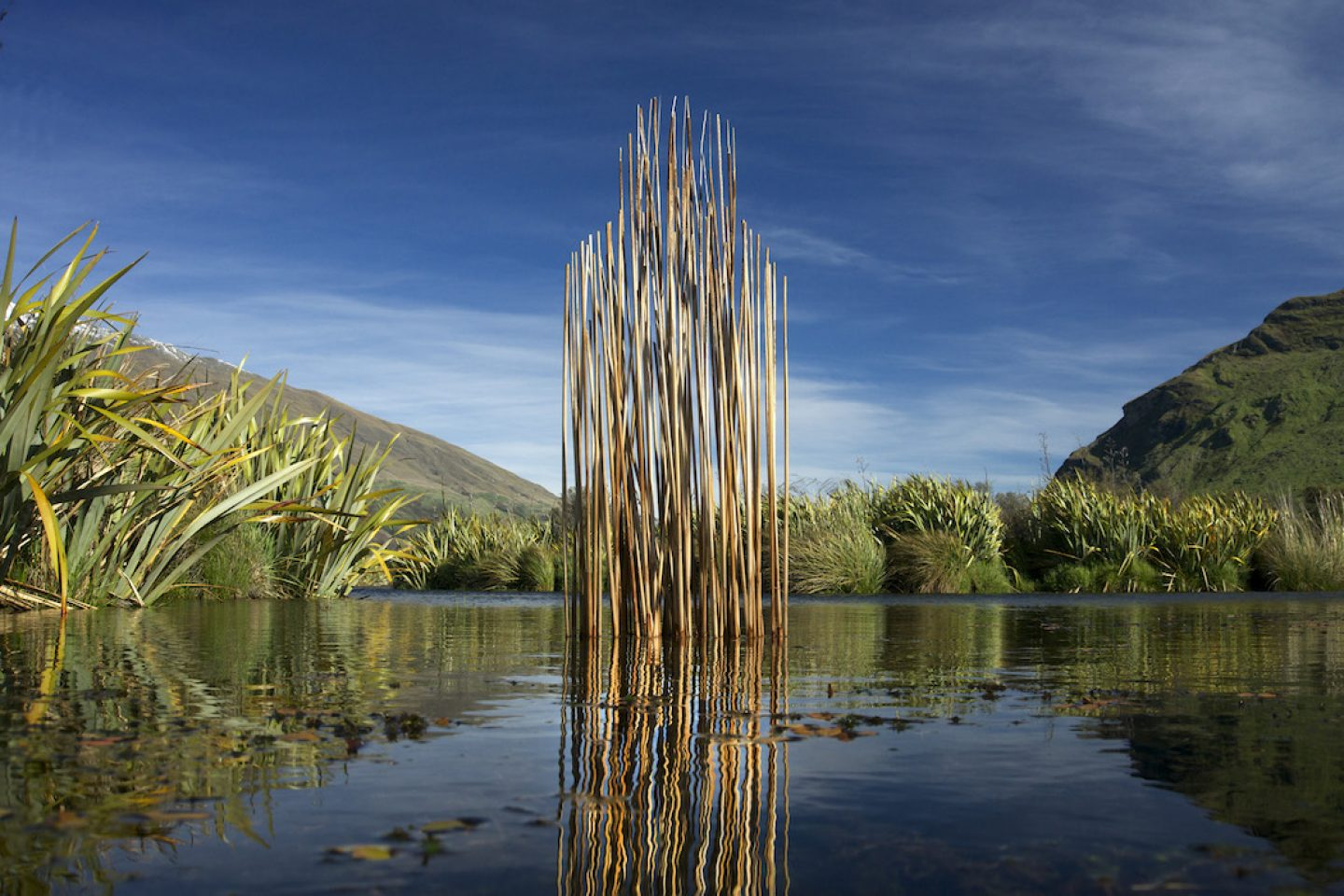 martinhill_art_ Wetland Guardian