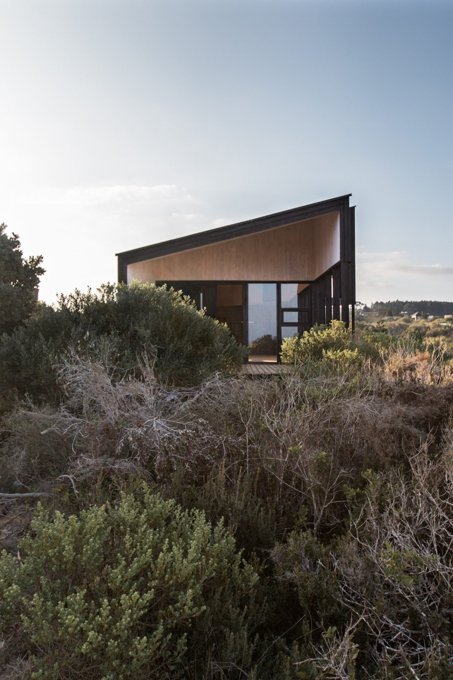 A Stranded House By Whale Architects Ignant