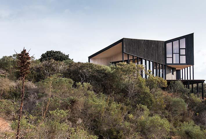 whale!_architecture_pre