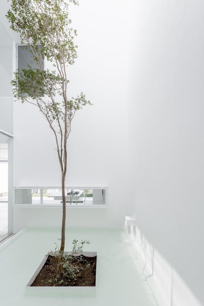 abraham-cota-paredes_architecture_011
