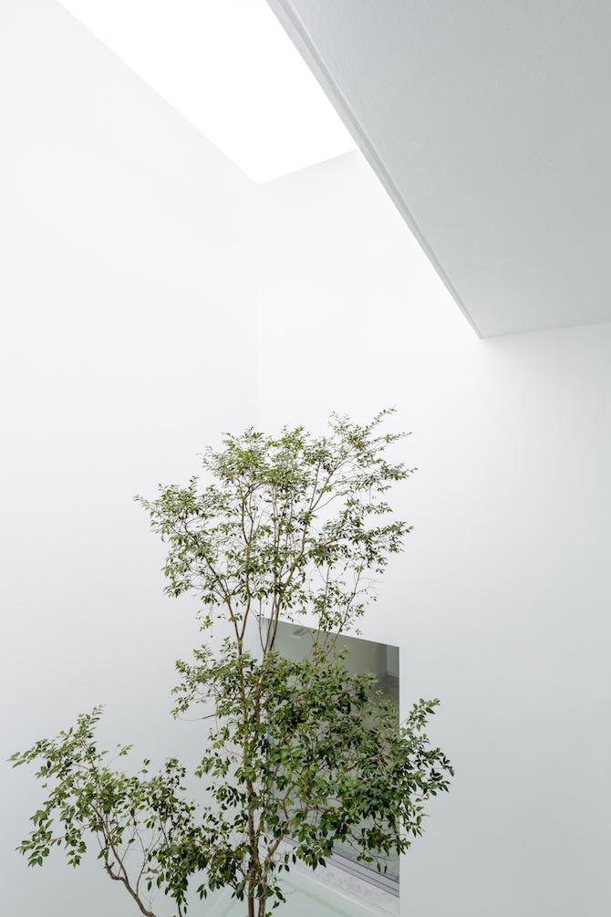 abraham-cota-paredes_architecture_018