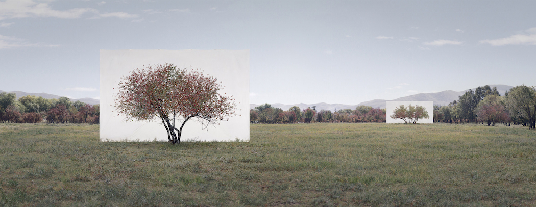 Myoung_Ho_Lee_Tree...7,2011