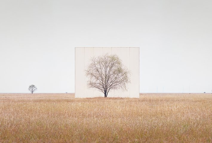 Nature Framed By Myoung Ho Lee