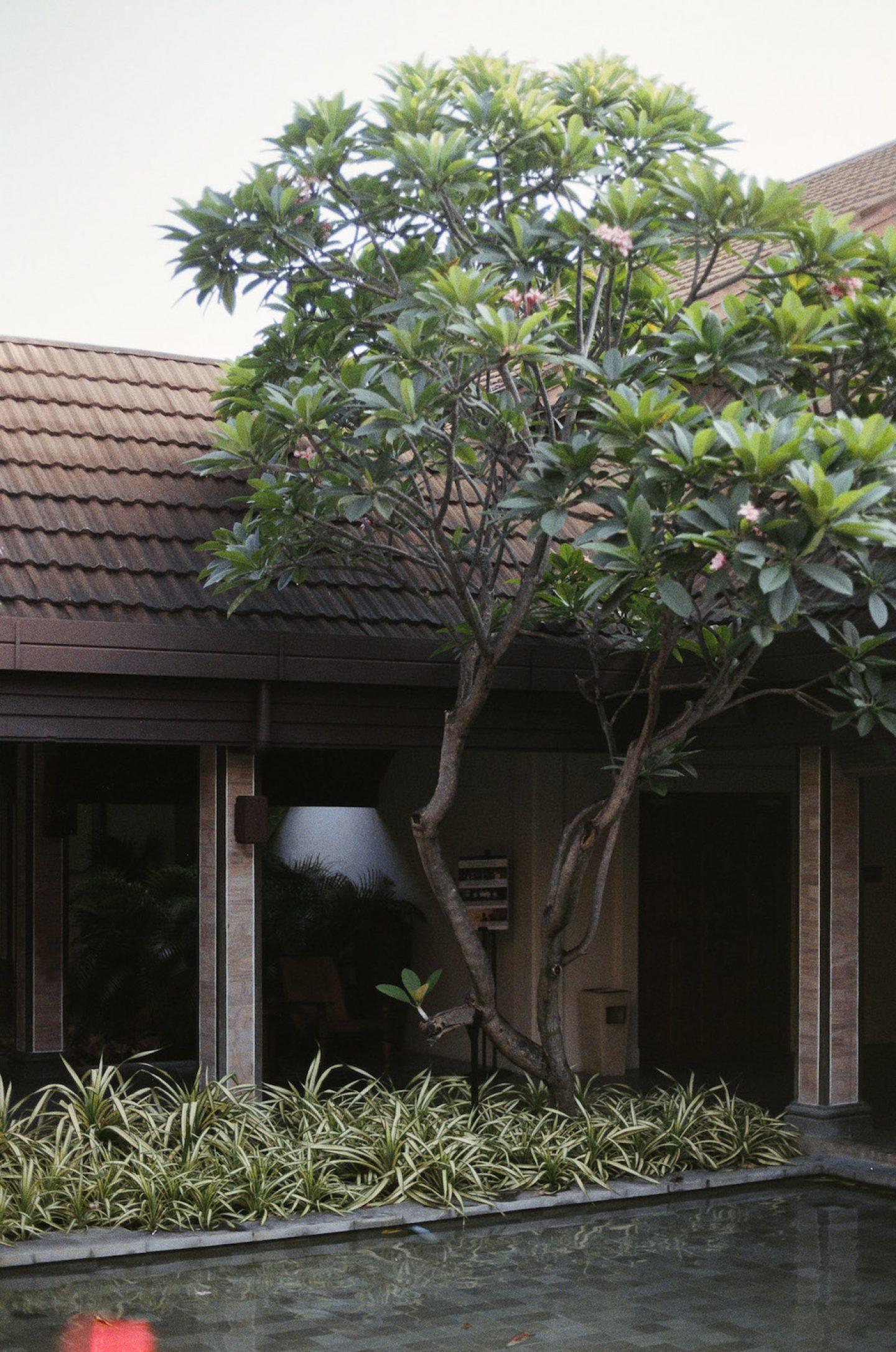 stefanhaehnel_malediven-18