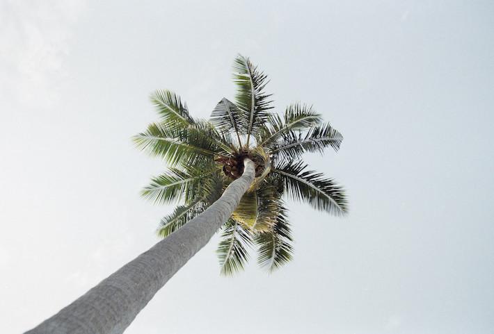 An Escape To The Maldives