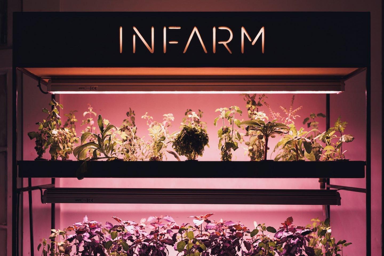 infarm_081_small