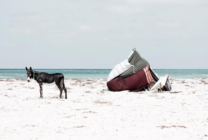 Walking Along Tunisian Beaches With Yoann Cimier