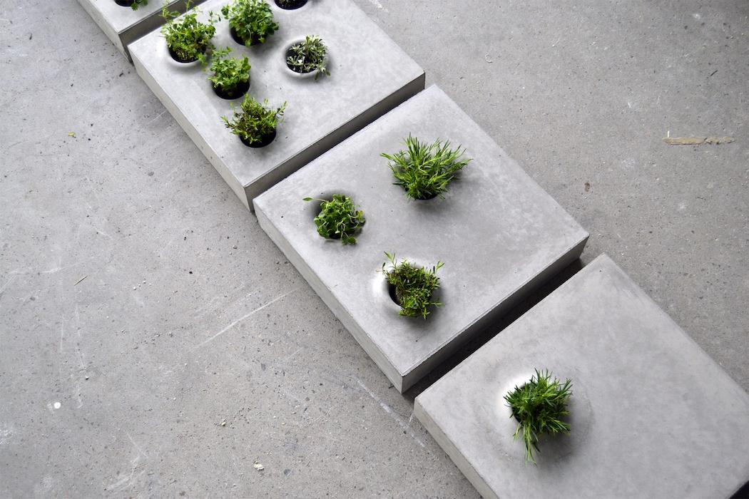 carolinebrahme_design-Grey_to_green_2