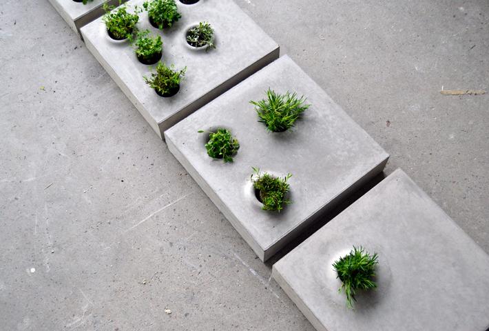 Concrete Plant Pots For Urban Green Living
